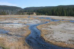 Yellowstone 2014 330