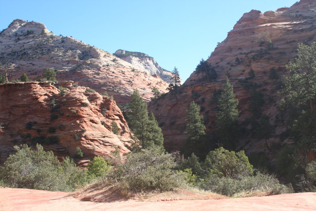Zion and Bryce 2014 050