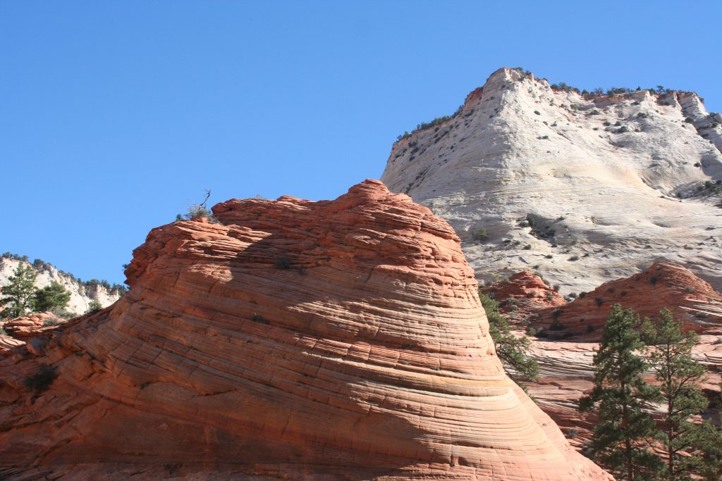 Zion and Bryce 2014 071