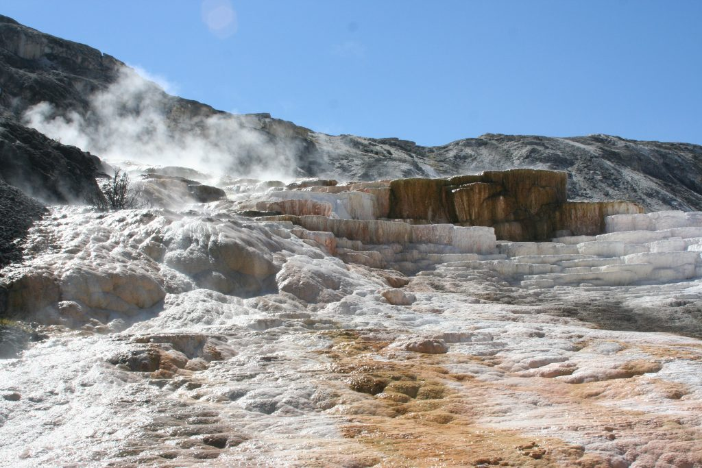 Yellowstone 2014 098