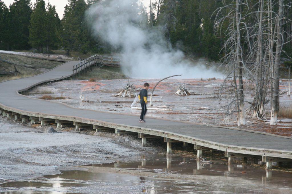 Yellowstone 2014 190