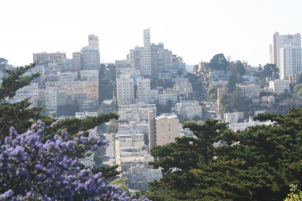 California Lodi San Francisco 2015 canon 080