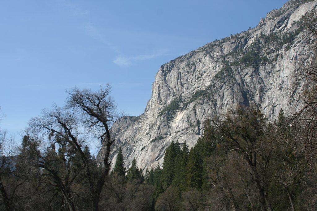California Yosemite 2015 canon 066