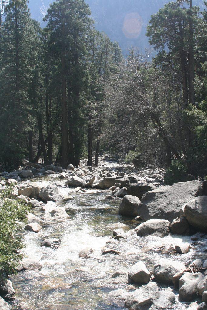 California Yosemite 2015 canon 104