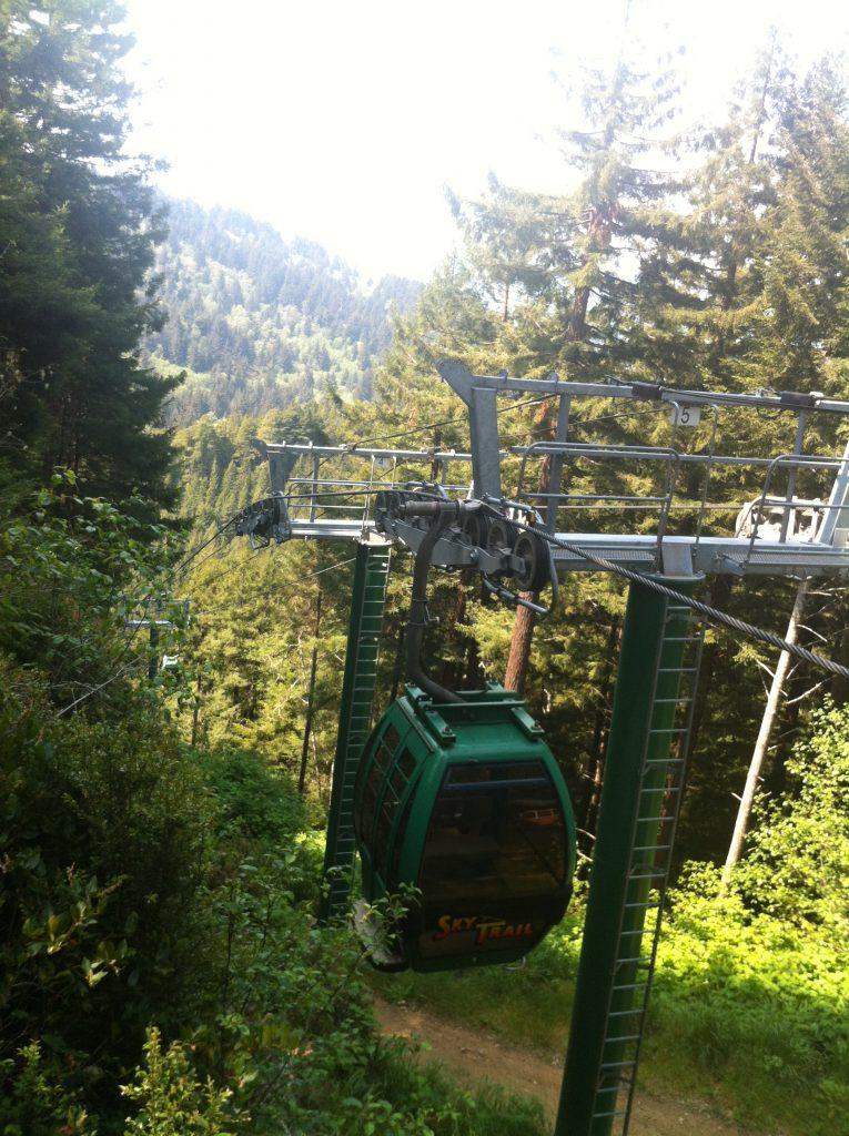 California Redwood National Park 2015 058