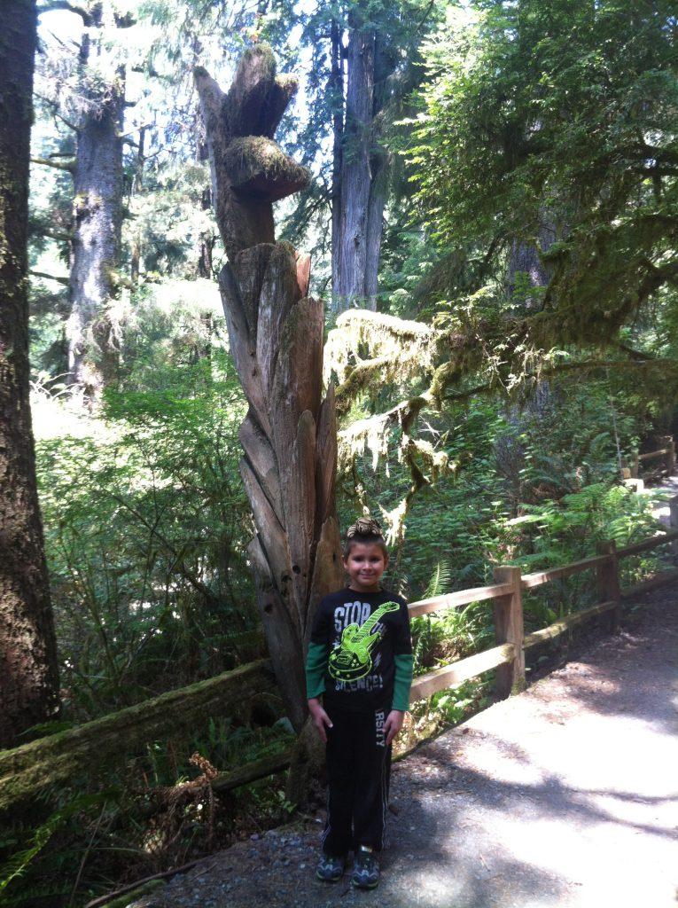 California Redwood National Park 2015 069