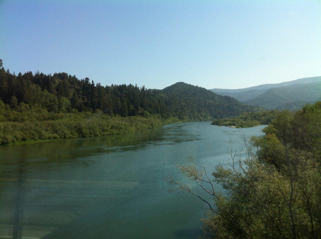 California Redwoods 2015 059