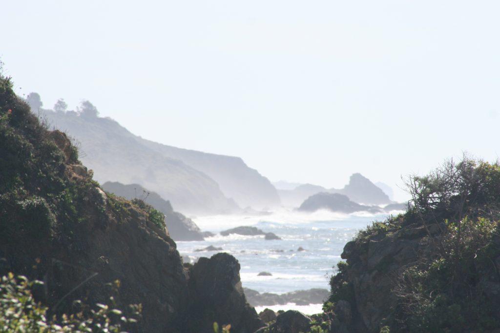 California 2015 394