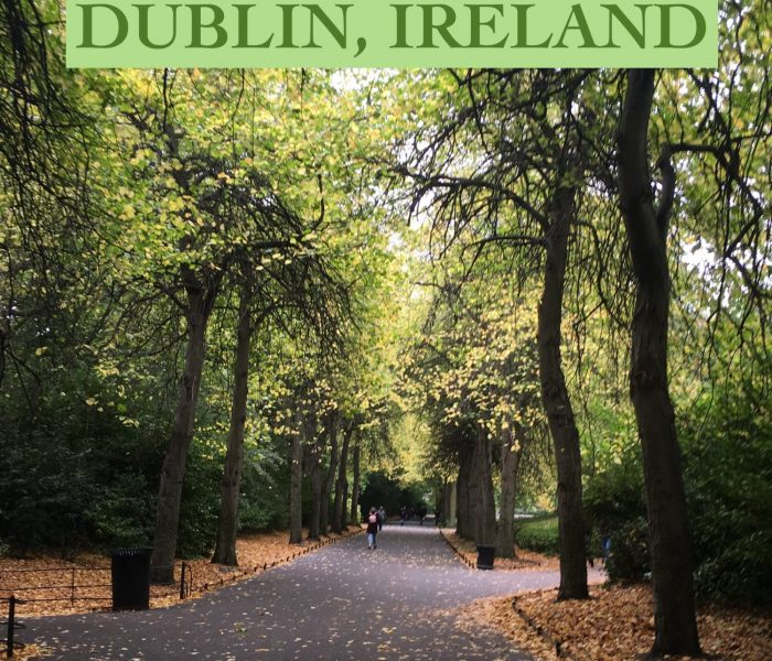 Shenanigans in Dublin, Ireland